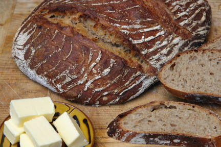 spelt sourdough loaf made using Breadtopia's recipe